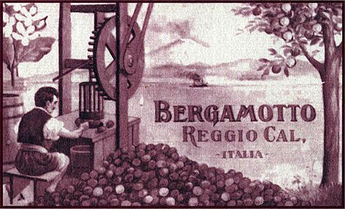 Etichetta ottocentesca del Bergamotto di Calabria