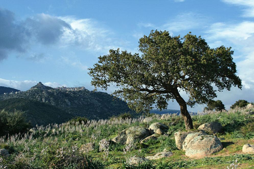 Veduta del piccolo borgo sardo di Orune (Nuoro) a 745 m. sulla cima del monte - Ph. Rafael Brix   CCBY2.5