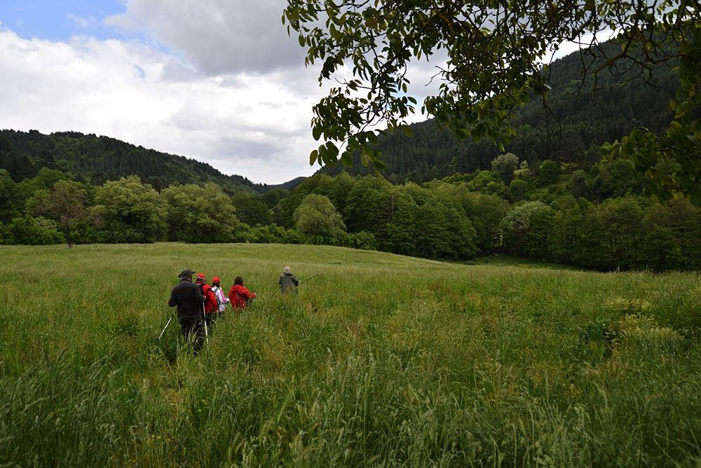 Escursionisti lungo il Cammino di Gioacchino - Ph. Walter Fratto