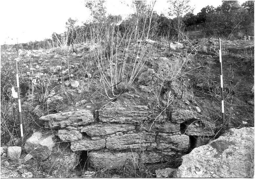 Resti di muro in blocchi di arenaria emersi nel corso dello scavo della Soprintendenza negli anni '80