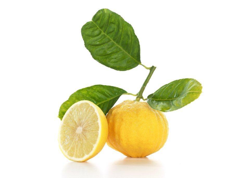 Frutto del bergamotto (Citrus bergamia Risso)