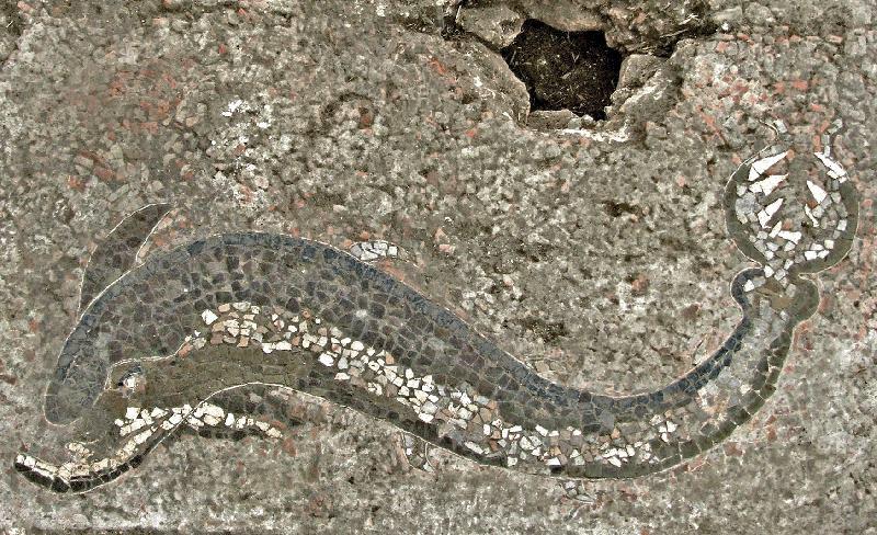 Part. con delfino del grande mosaico ellenistico di Kaulon, Parco Archeologico di Monasterace, III sec. a.C. - Ph. courtesy of CasaMatta - Museo Archeologico di Monasterace