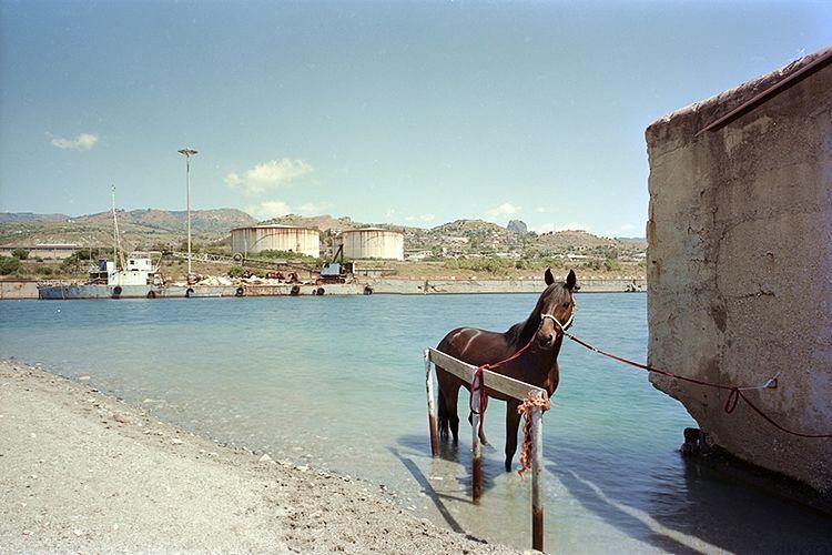 """Una delle immagini della mostra fotografica """"The Third Island"""""""