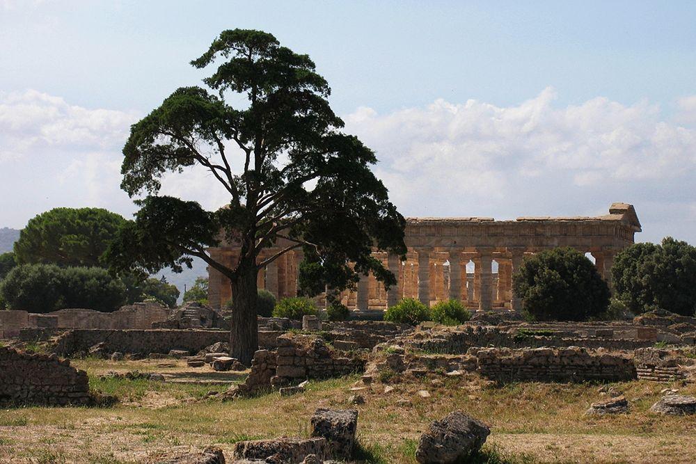 Scorcio del parco archeologico di Paestum (Salerno) - Ph. Aurelio Candido