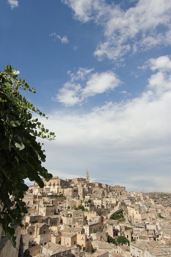 Capperi a Matera - Ph. Luca Paletta | CCBY2.0