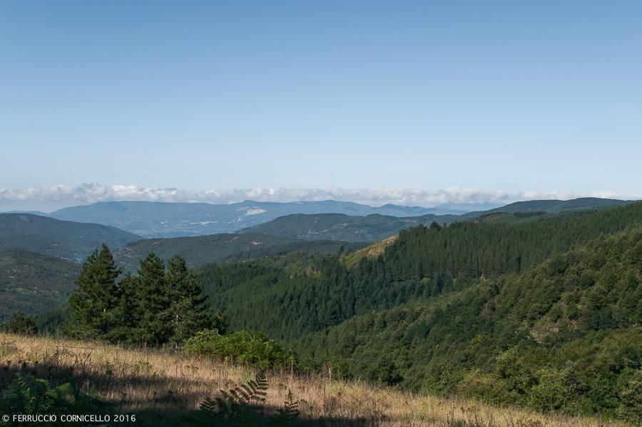 Veduta dell'altopiano della Sila - Ph. © Ferruccio Cornicello