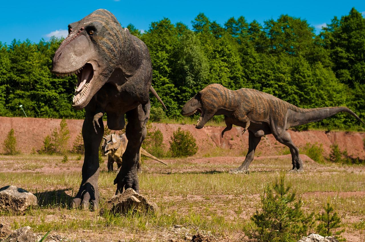 Dinosauri teropodi - Ph. Dariusz Sankowski | Public domain