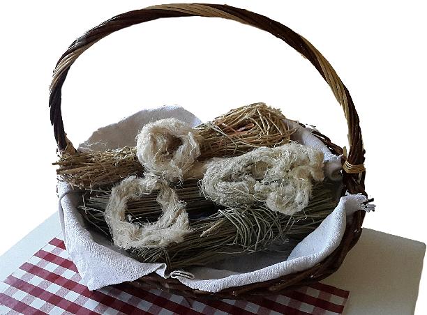 Fibra e tessuto di ginestra - Ph. © Angela Rubino