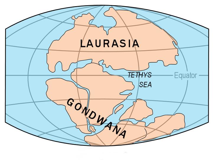 Mappa dell'antico supercontinente Pangea suddiviso in Laurasia e Gondwana: essa rappresenta l'assetto delle masse continentali e dei bacini oceanici al tempo dei dinosauri. E' uno stato della deriva dei continenti, teoria geologica formulata da Alfred Wegener, secondo la quale i continenti si muoverebbero l'uno rispetto all'altro (oggi la comunità scientifica parla di tettonica delle placche) - Image source