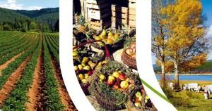 Biodiversità e Sostenibilità. Nasce in Calabria il Biodistretto della Sila