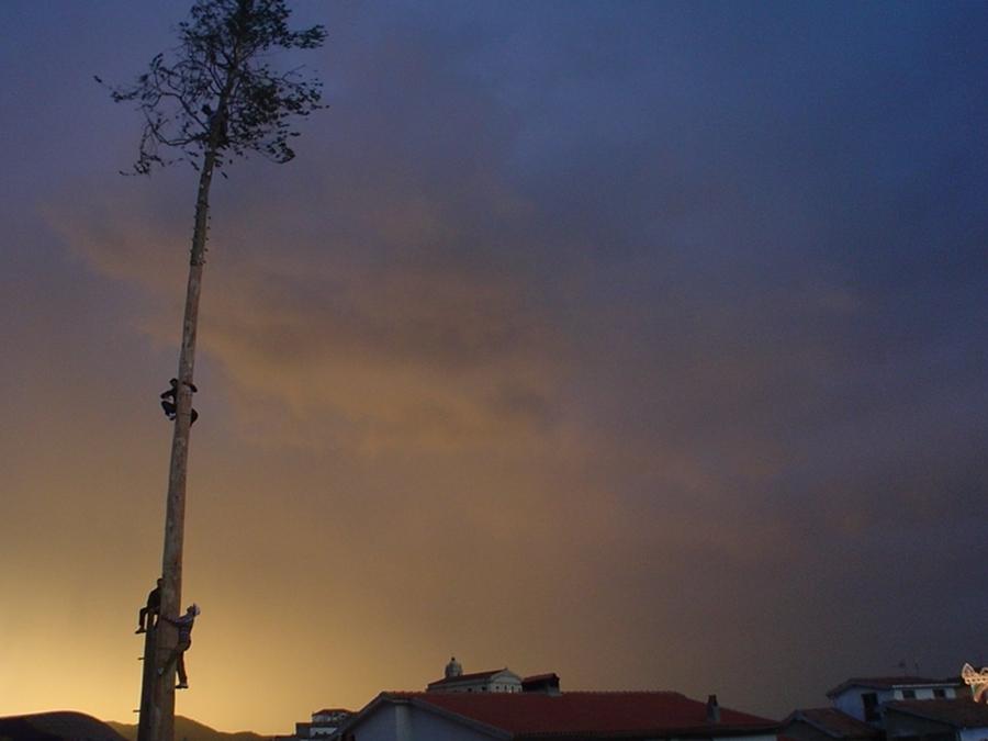 Un momento del rito arboreo di Accettura (Matera), il Maggio - Courtesy Biagio Labbate