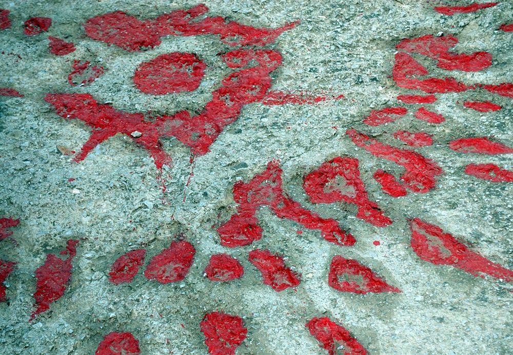 """Le """"rose di Sarajevo"""" © Angela Capurso"""