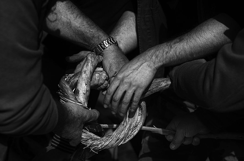 Le tortë, i legacci di prugno selvatico - Ph. © Francesco Cariati