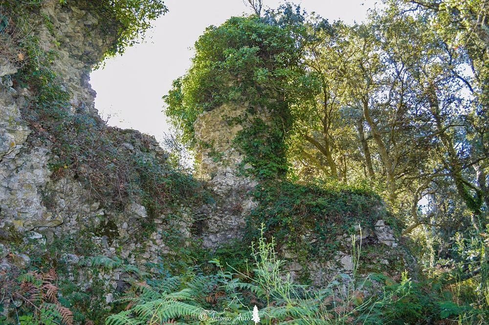 Resti delle mura di cinta di Altanum - Ph. © Antonio Aricò