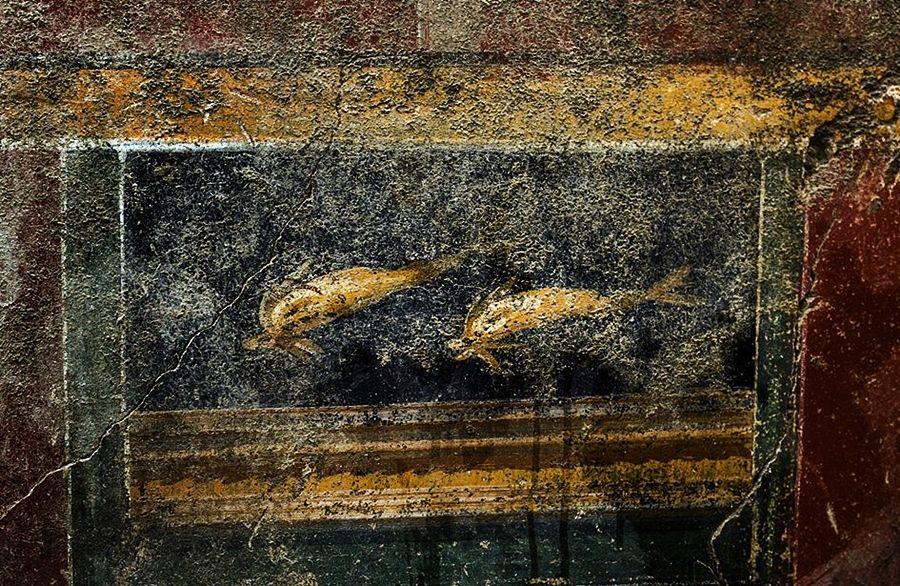 Coppia di delfini su fondo nero, affresco dalla Domus dei Delfini, Pompei - Image by Parco Archeologico di Pompei