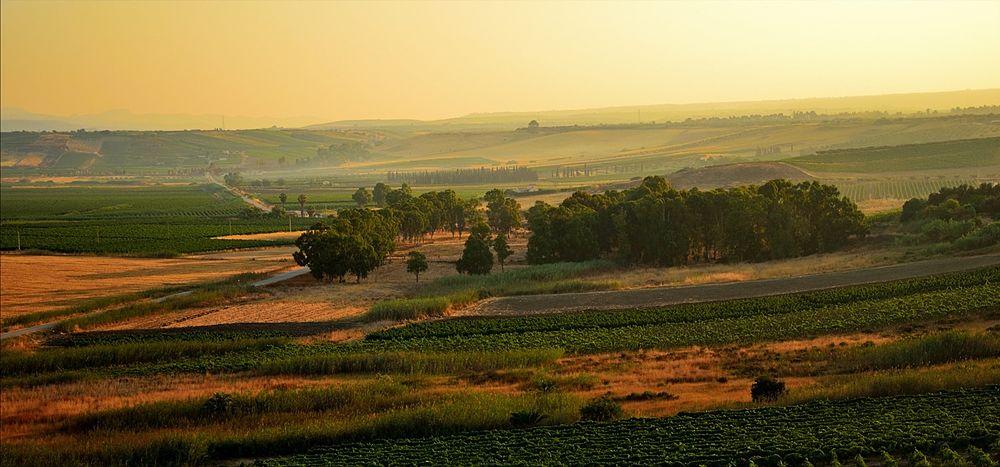 Paesaggio agreste nei dintorni del Parco Archeologico di Selinunte - Ph. Massimo Frasson | ccby-sa2.0