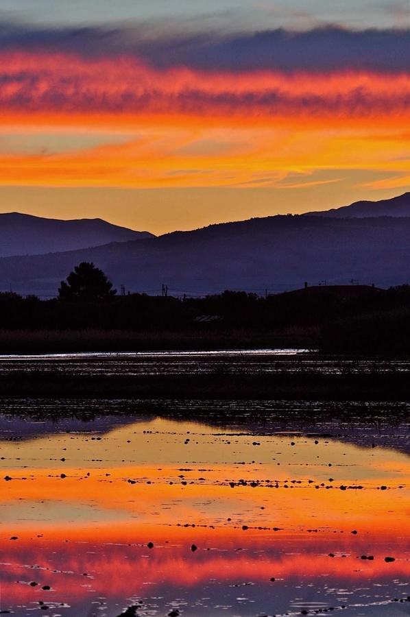 Le risaie di Sibari al tramonto – Ph. © Stefano Contin
