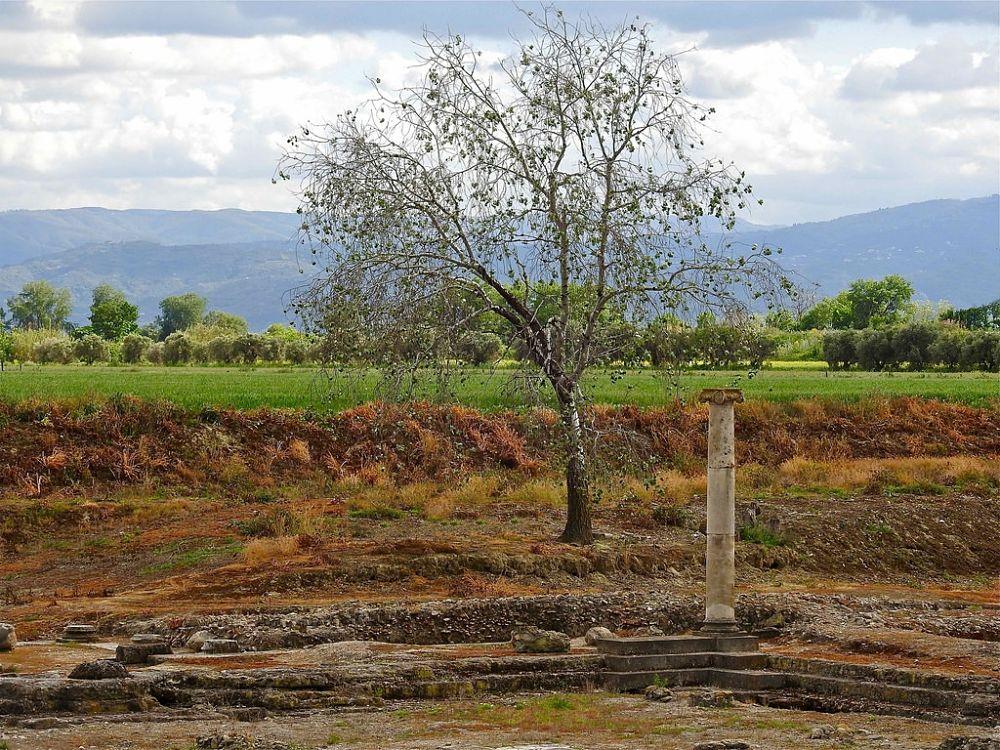 Scorcio degli scavi di Sibari – Ph. © Stefano Contin