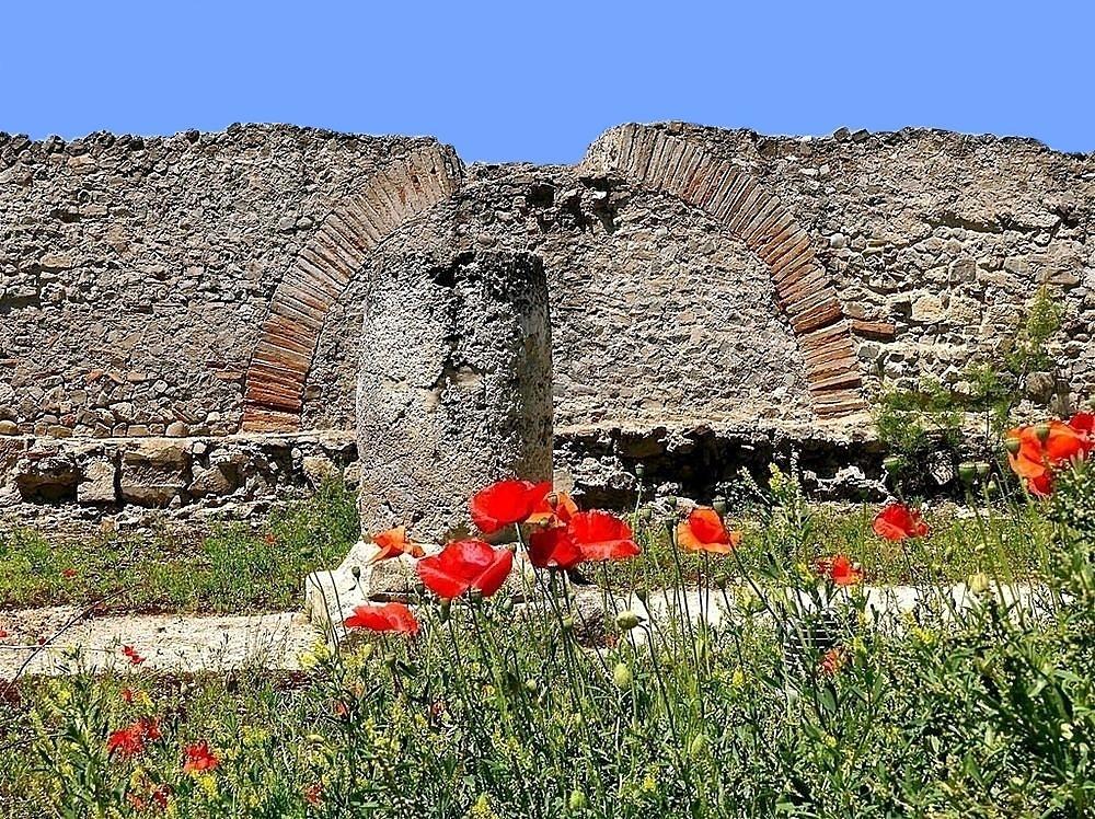 Primavera negli scavi di Sibari – Ph. © Stefano Contin