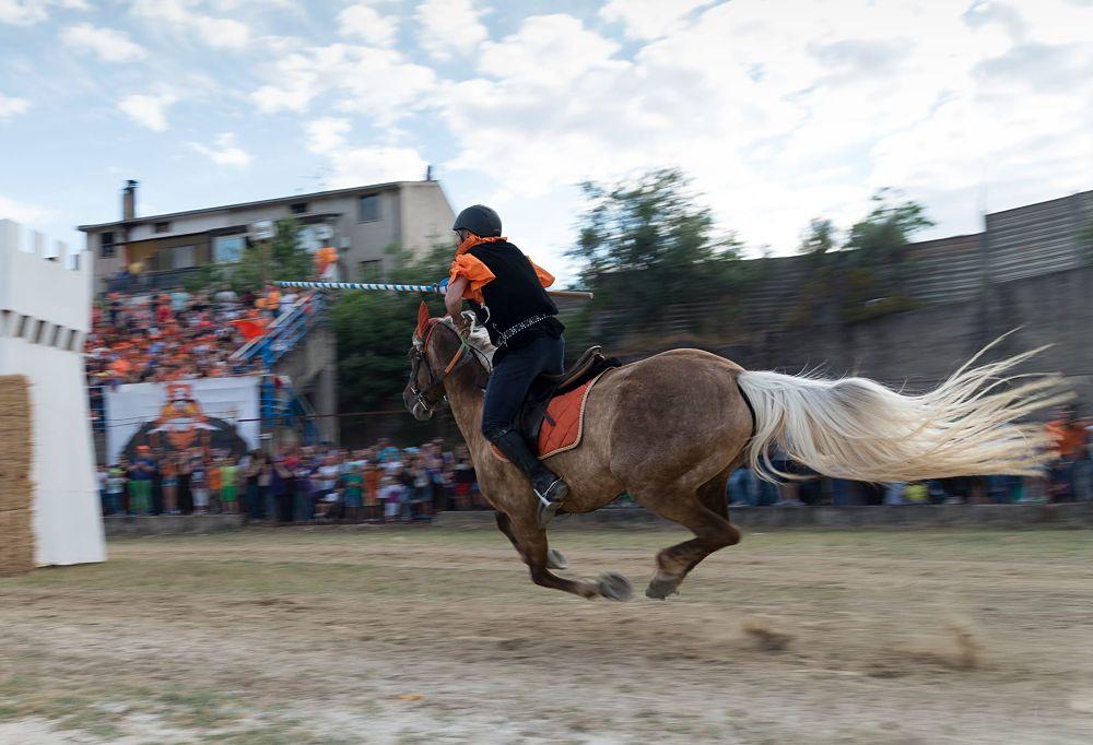 Il cavaliere Francesco Fabbricatore, detto 'U Breju, Palio del Principe 2018, Bisignano (Cs) - Ph. © Francesco Cariati