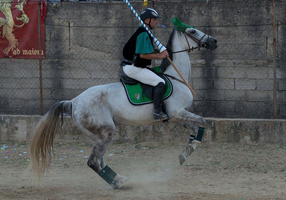 Il cavaliere Ivan Molino (rione Piano), detto Capello, Palio del Principe, Bisignano (Cs) – Ph. © Francesco Cariati