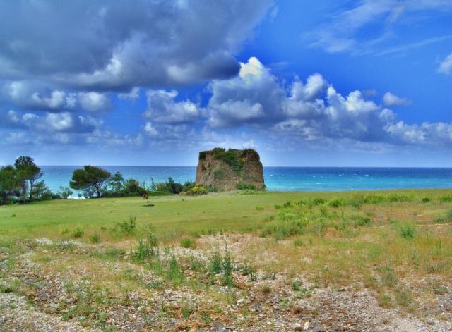 Tratto della costa di Acciaroli, Pollica (Salerno) - Ph. Fiore Silvestro Barbato | ccby-sa2.0