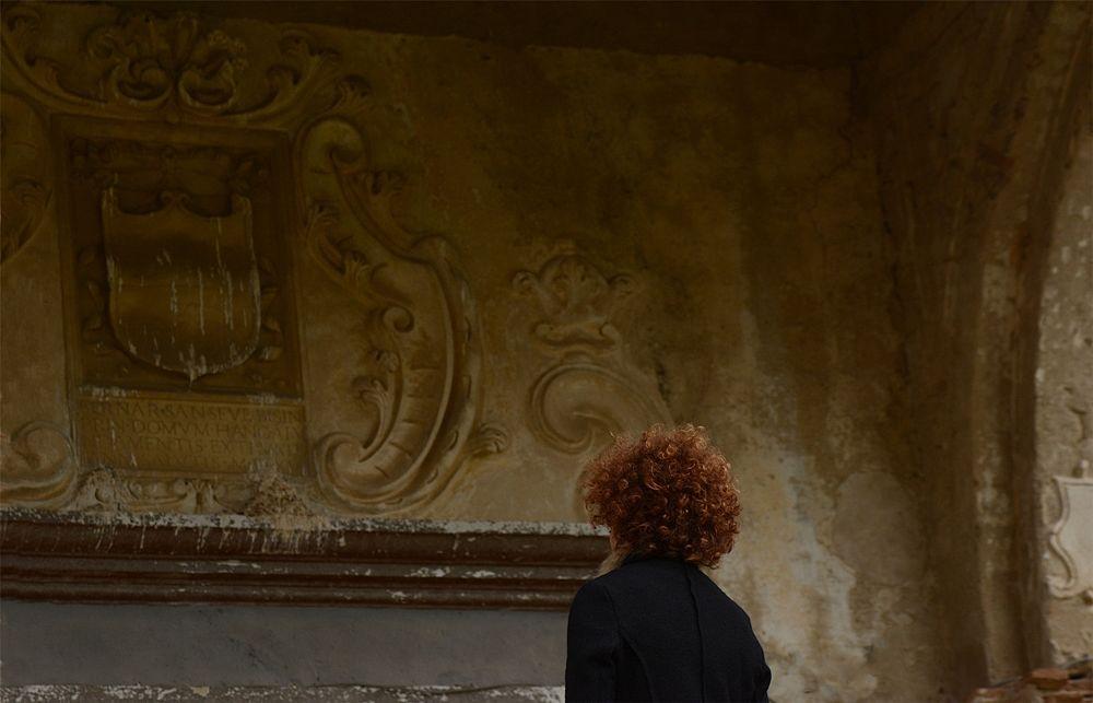Lo stemma dei Principi Sanseverino di Bisignano, XVI sec., Castello di San Mauro, Corigliano Calabro - Ph. © Francesco Cariati