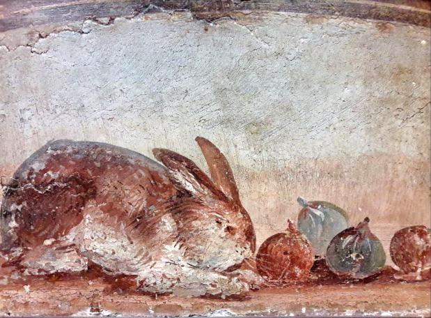 Affresco con coniglio e fichi da Ercolano - Image by MANN