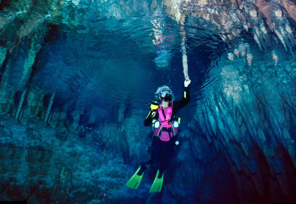 Stalattiti nella Grotta Gargiulo, Isola di Dino, Praia a Mare (Cs) - Image by ItaliaNostra