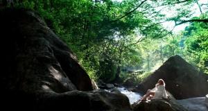 Le Vie dell'Acqua. Cinque giorni di wellness alle Terme Luigiane, antichissima stazione termale calabrese