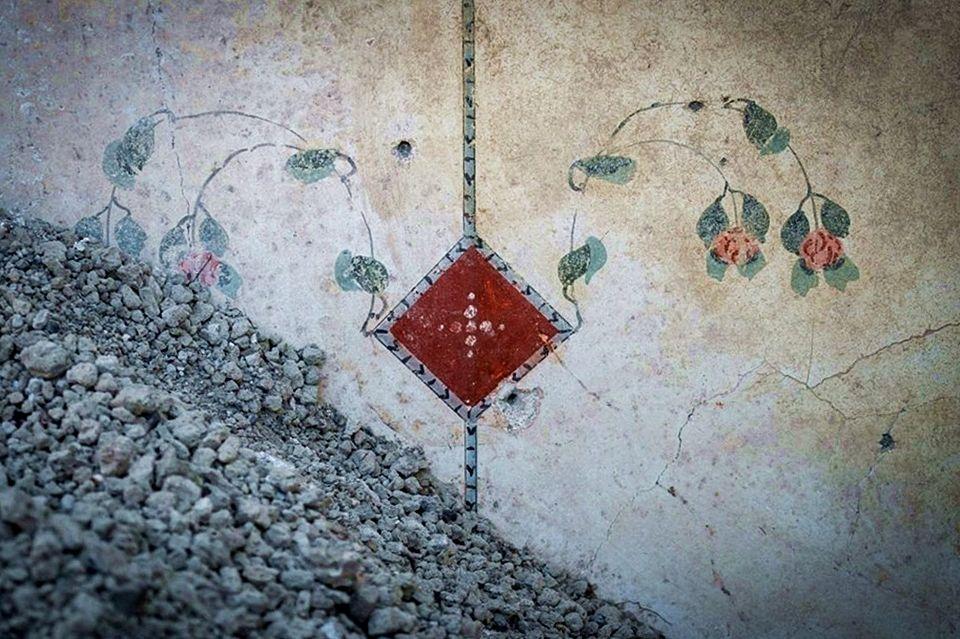 Affresco con rose dalla Domus di Giove, II sec. a.C. - I sec. d.C., Pompei - Image by Parco Archeologico di Pompei' / Foto di Cesare Abbate