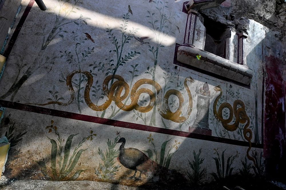 Veduta d'insieme del larario scoperto a Pompei - Ph. © Ciro Fusco