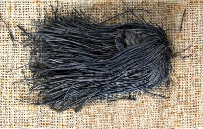 Fiocco ottenuto da aghi di pino. Museo Archeologico Nazionale, Napoli