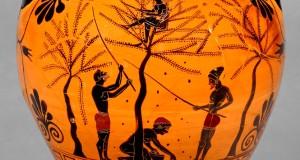 Per la creazione di una Rete della Biodiversità Antica. Secondo convegno a Roma