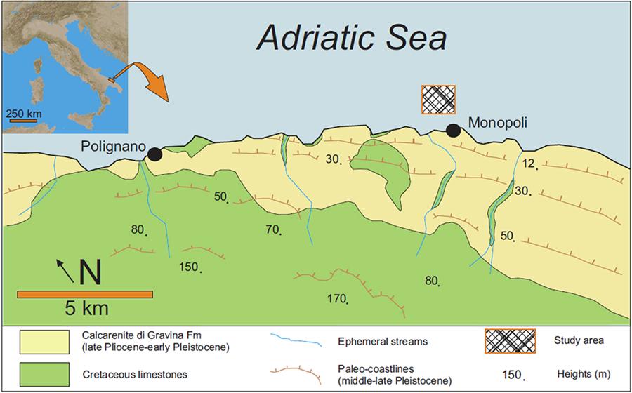 La posizione della barriera corallina trovata al largo di Monopoli, in Puglia (Scientific Reports)