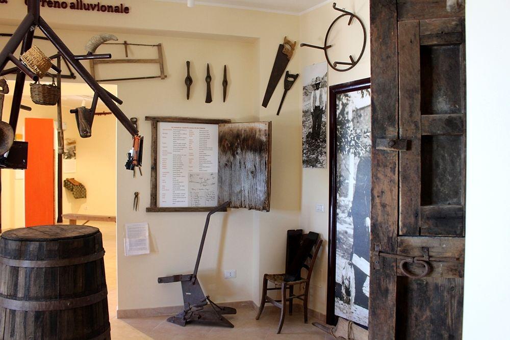 """Scorcio di una delle sale del Museo della Lingua Greco-Calabra """"Gerhard Rohlfs"""""""