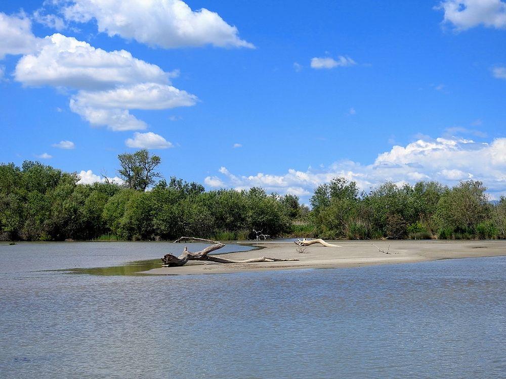 Scorcio della Foce del fiume Crati - Ph. © Stefano Contin