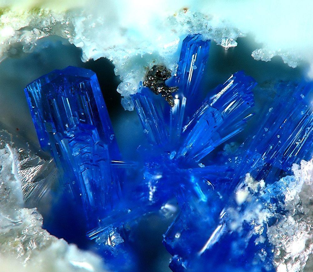 Cristalli di linarite - Ph. Christian Rewitzer