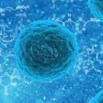 Tumori: da Napoli una speranza contro le metastasi e gli effetti collaterali delle terapie