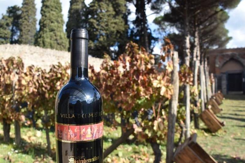 Il vino Villa dei Misteri prodotto dalla cantina Mastroberardino