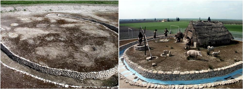 Scorcio del vasto sito neolitico di Passo di Corvo (Foggia): a sin. trince a C e a dx. ricostruzione di capanna scala 1:1