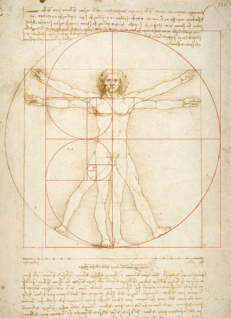 Uomo Vitruviano di Leonardo da Vinci e la spirale di Fibonacci