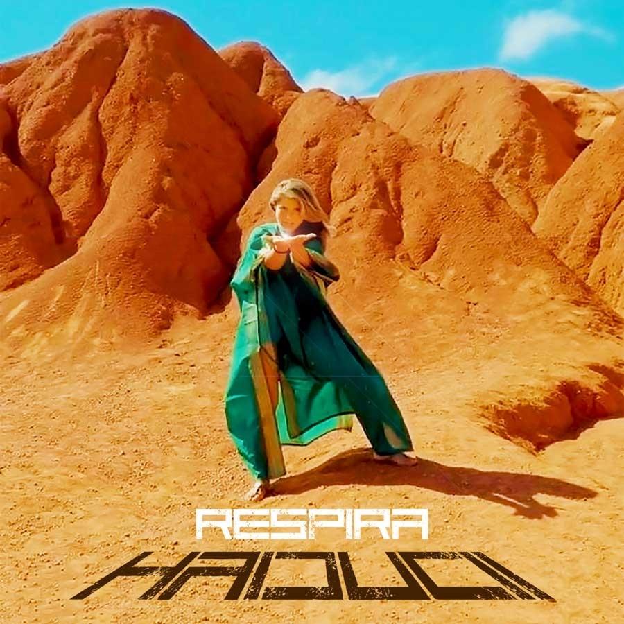La copertina del nuovo singolo di Haiducii