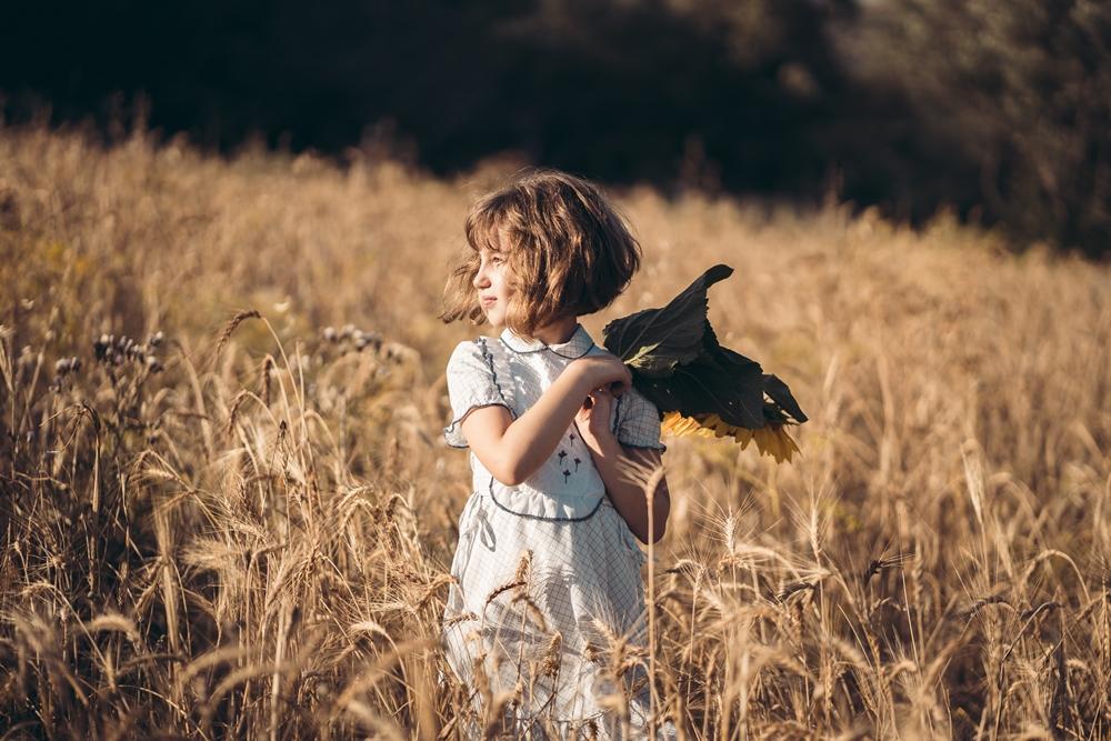 Girasoli a San Floro © Pierluigi Ciambra