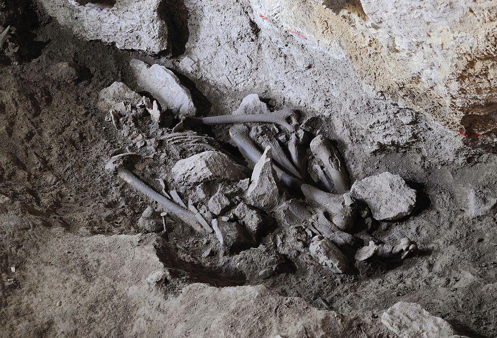 Scheletro d'epoca neolitica rinvenuto nella grotta di Pietra Sant'angelo, a S. Lorenzo Bellizzi (Cs)