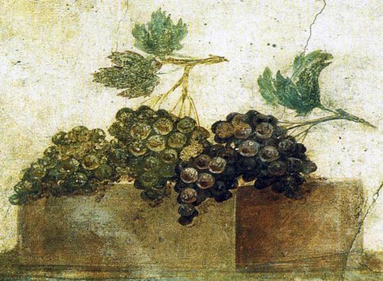 Grappoli d'uva da un affresco pompeiano a tema agreste, I sec. d.C.
