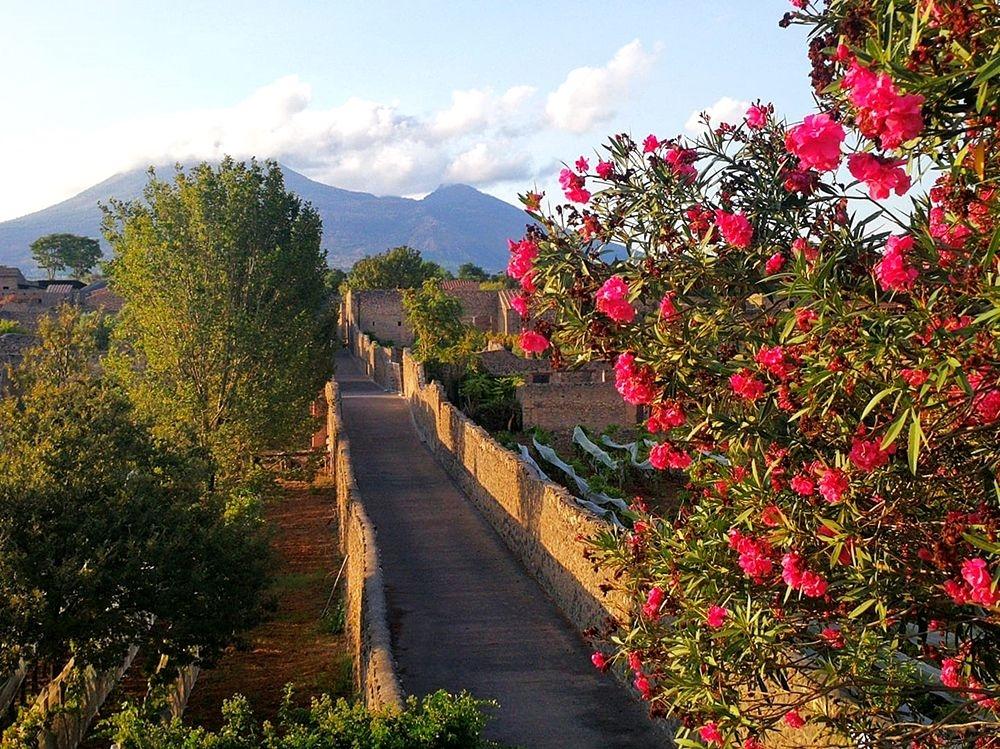 Autunno 2020 a Pompei - © Image courtesy Laura Noviello