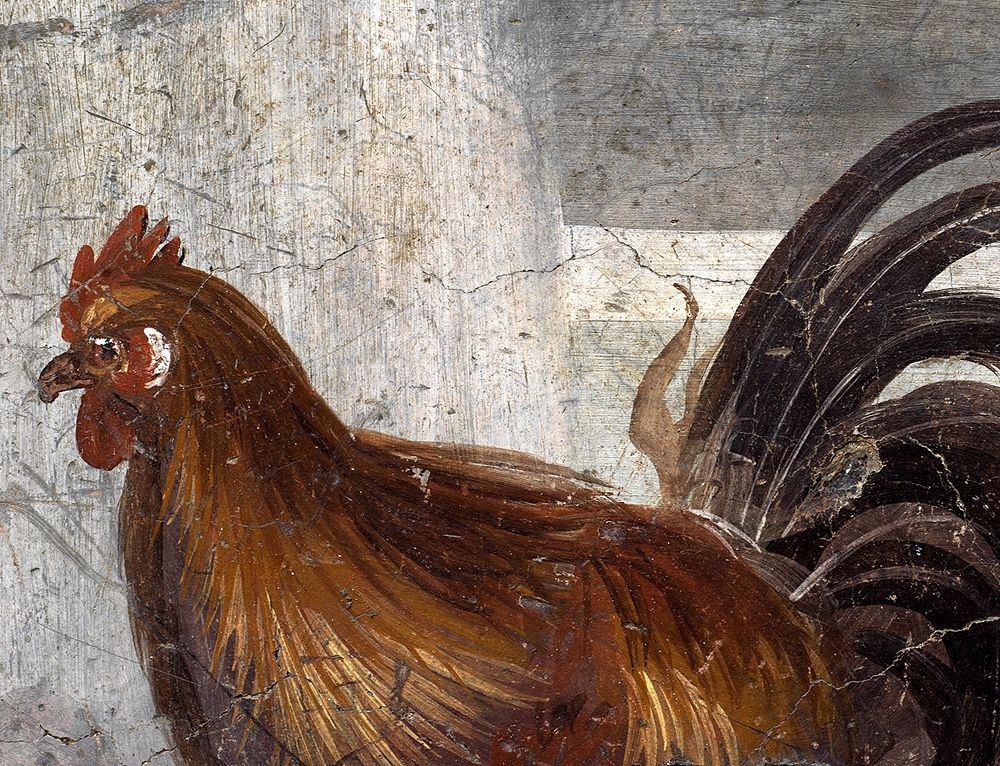 Particolare del gallo raffigurato sul bancone del thermopolium, Pompei - Ph. © Luigi Spina