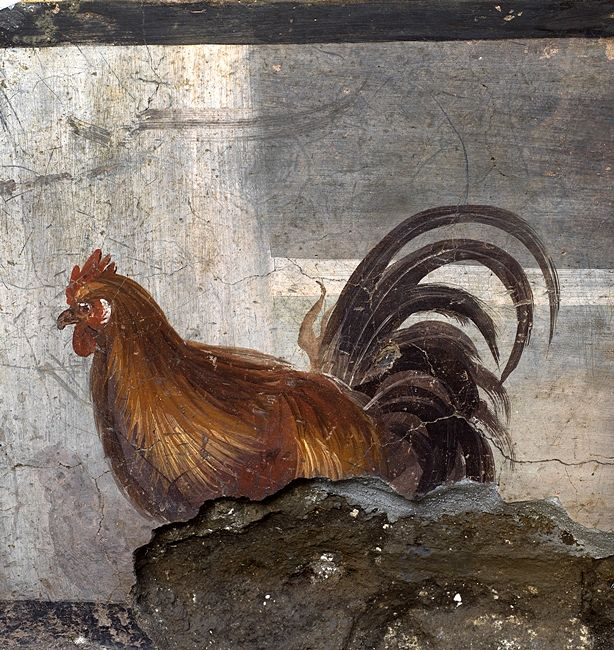 Il gallo, thermopolium, Pompei - Ph. © Luigi Spina