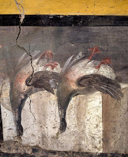 Natura morta con anatre germane, thermopolium, Pompei - Ph. © Luigi Spina